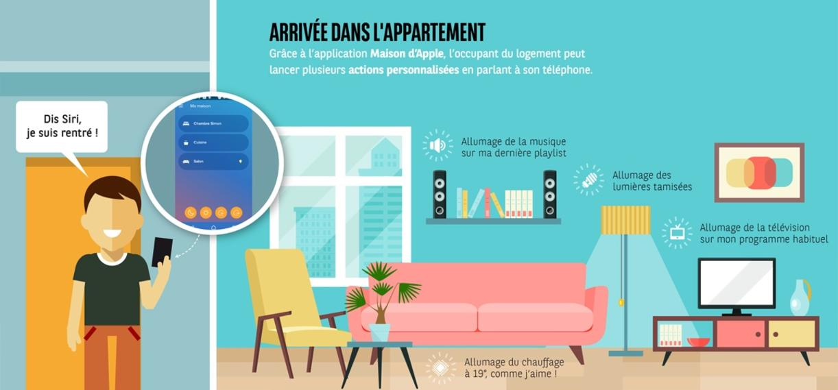 cwn infographie appartement 1155x700