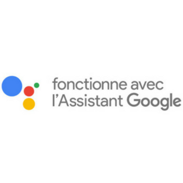 assistant vocal google