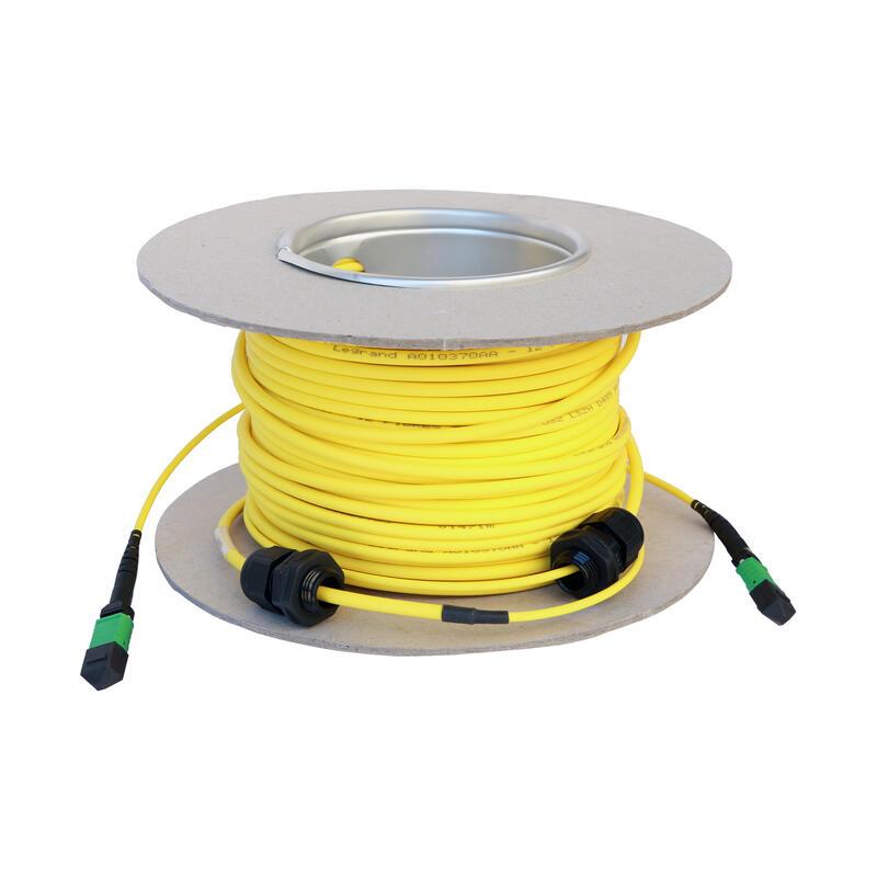 Microcâble OS2 MTP LCS³ 12 fibres - MTP et MTP - longueur 30m