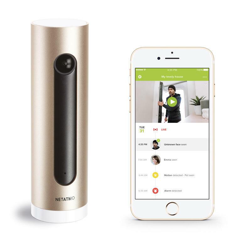 Caméra Intérieure Intelligente et connectée Netatmo avec reconnaissance faciale et alerte sur smartphone - alu/or